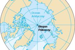 13. arktyczny