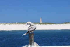 30. Baker_Island_Coastline