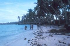 24. Fanning wybrzeże