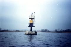 09. dalba wietlna rybi ostrw s